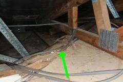 R1_200319_Termites_24