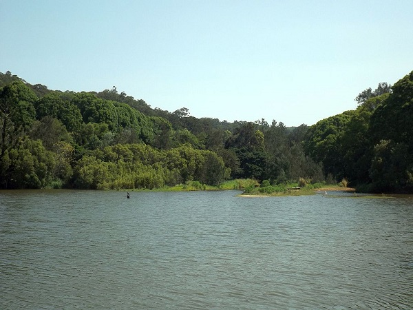 Currumbin Creek at Robert Neumann Park in Currumbin Valley, Queensland