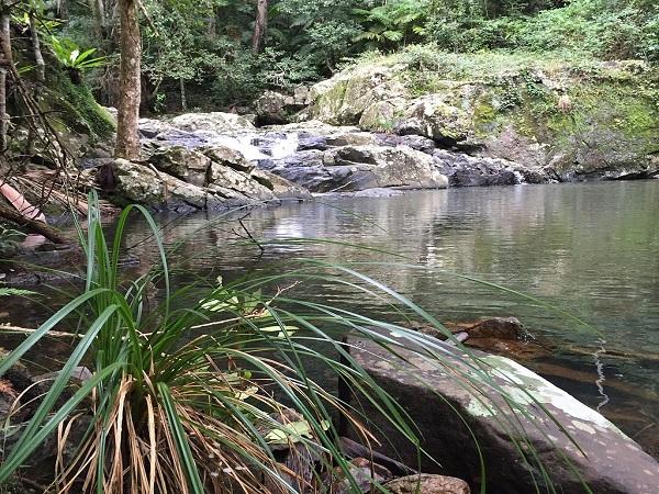 Lower Gwongoorool Rock Pools, Nerang River, Springbrook National_Park, Gold Coast Hinterland, Queensland, Australia